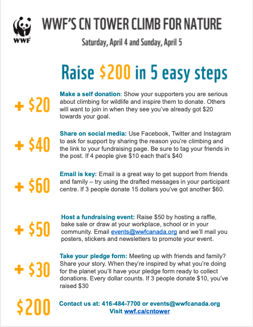 Fundraising tips poster - Raise $200 in 5 easy steps