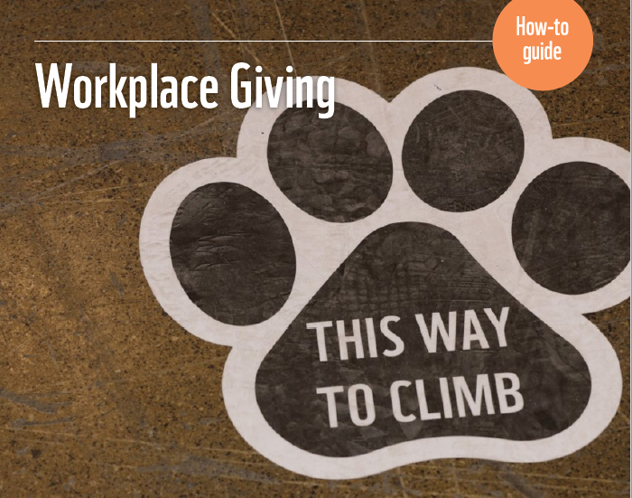 Workplace_Fundraising_Ideas